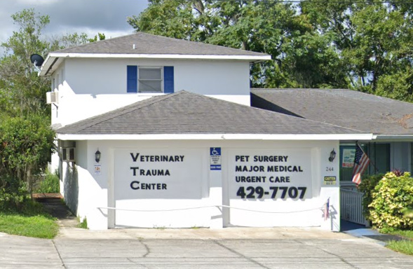 Veterinarian in Clermont, FL